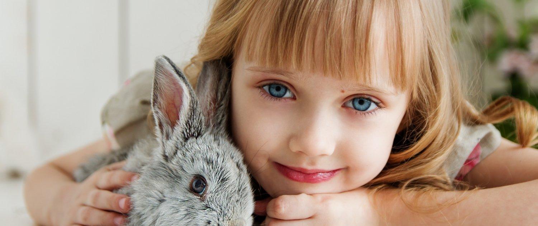 Un coniglio nano in casa: cure e alimentazione